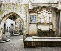 Muckross Abbey Interior, Killarney